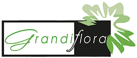 Garten- und Landschaftsbau - Garten Grandiflora